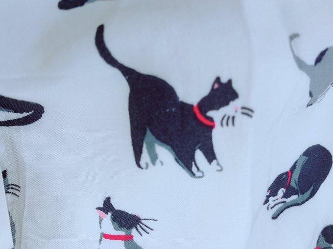猫 画像 cat image 猫柄のワンピースにモルガナみたいなのいた!!!