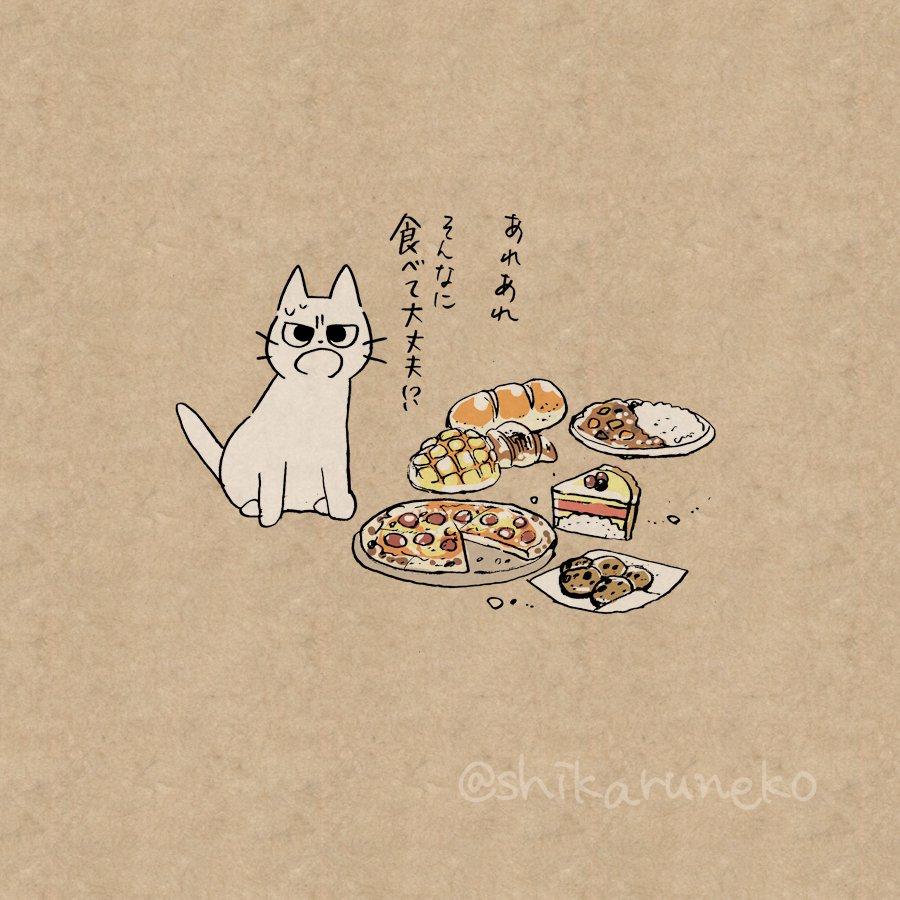 猫 画像 cat image やけ食いする人を叱ってくれる猫  0