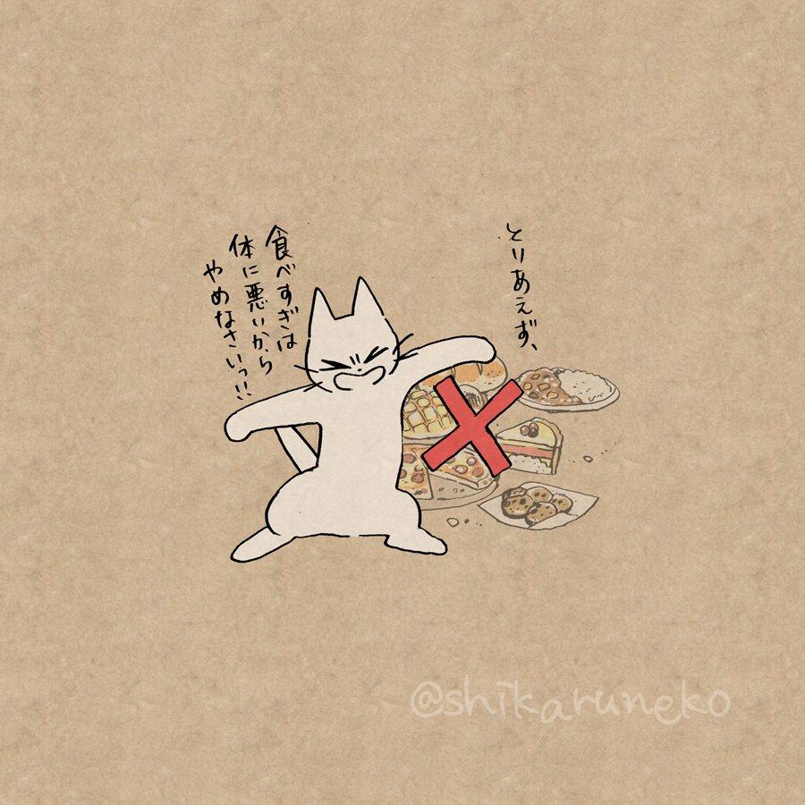 猫 画像 cat image やけ食いする人を叱ってくれる猫  3