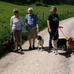 Our inaugural dog walk. A new departure for South Cots.