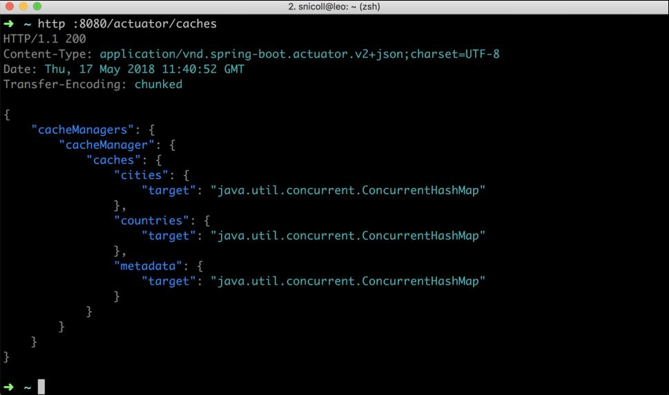 spring boot actuator info build version