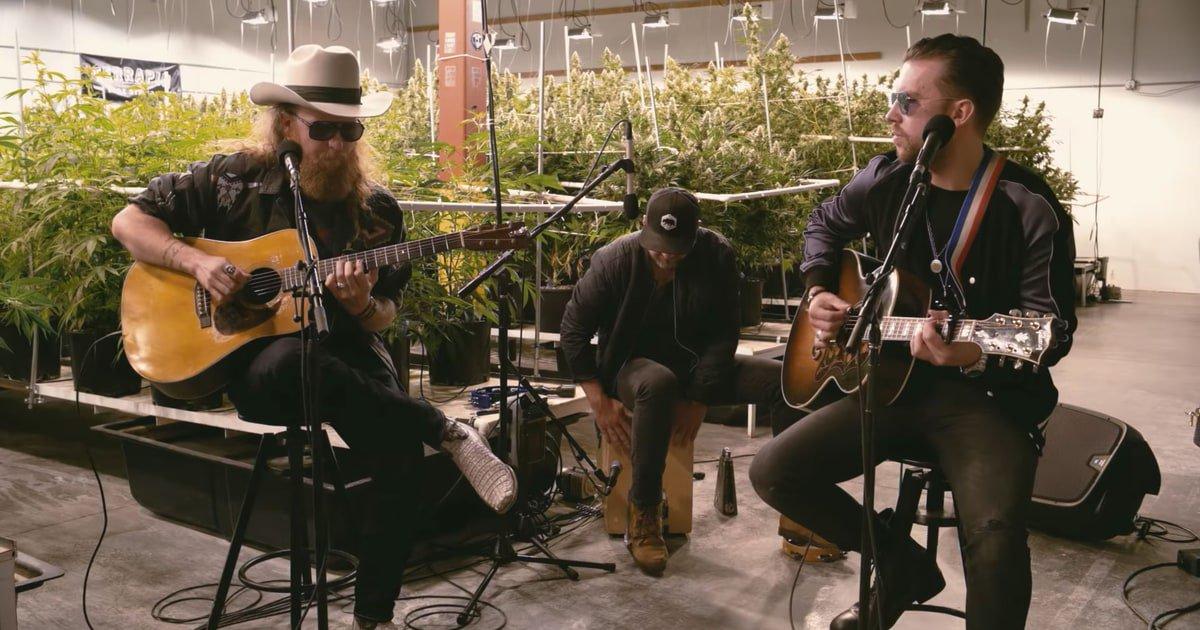 See Brothers Osborne's gentle acoustic performance of 'Pushing Up Daisies (Love Alive)' https://t.co/5DeBheHbuk https://t.co/d5dlyv7qfK