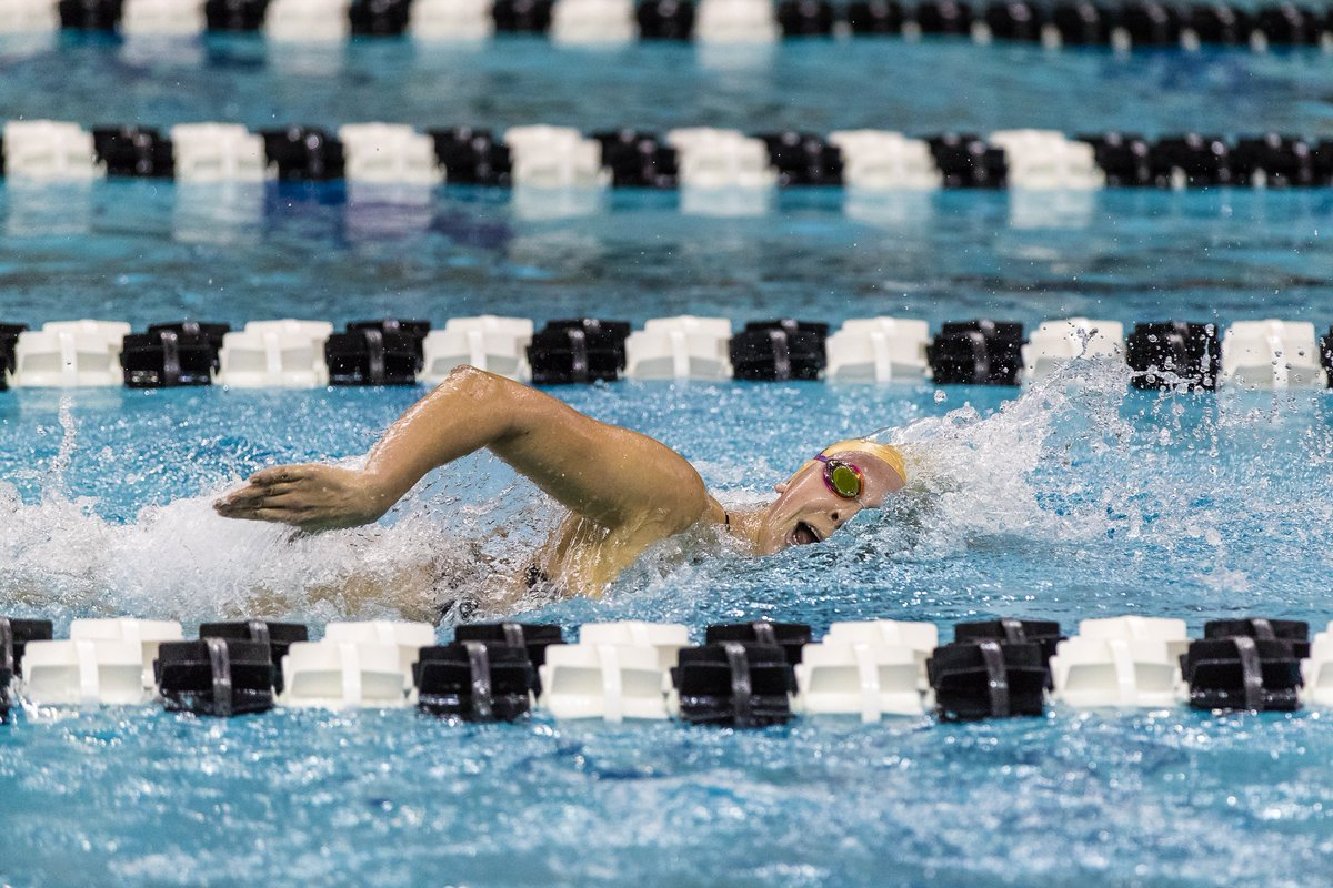 Purdue Swimming on Twitter: