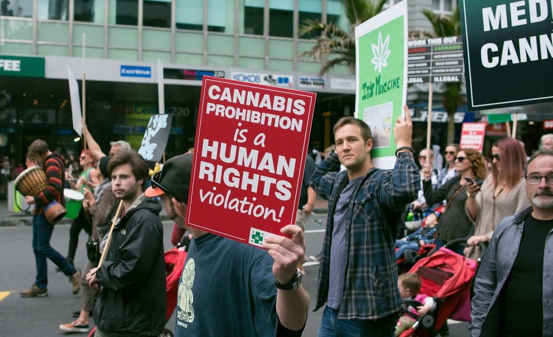 """Image result for cannabis human rights protest"""""""