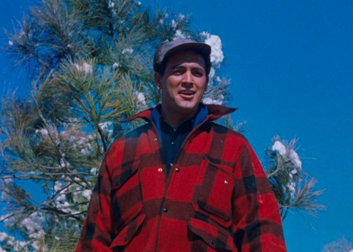 Image result for rock hudson all that heaven allows