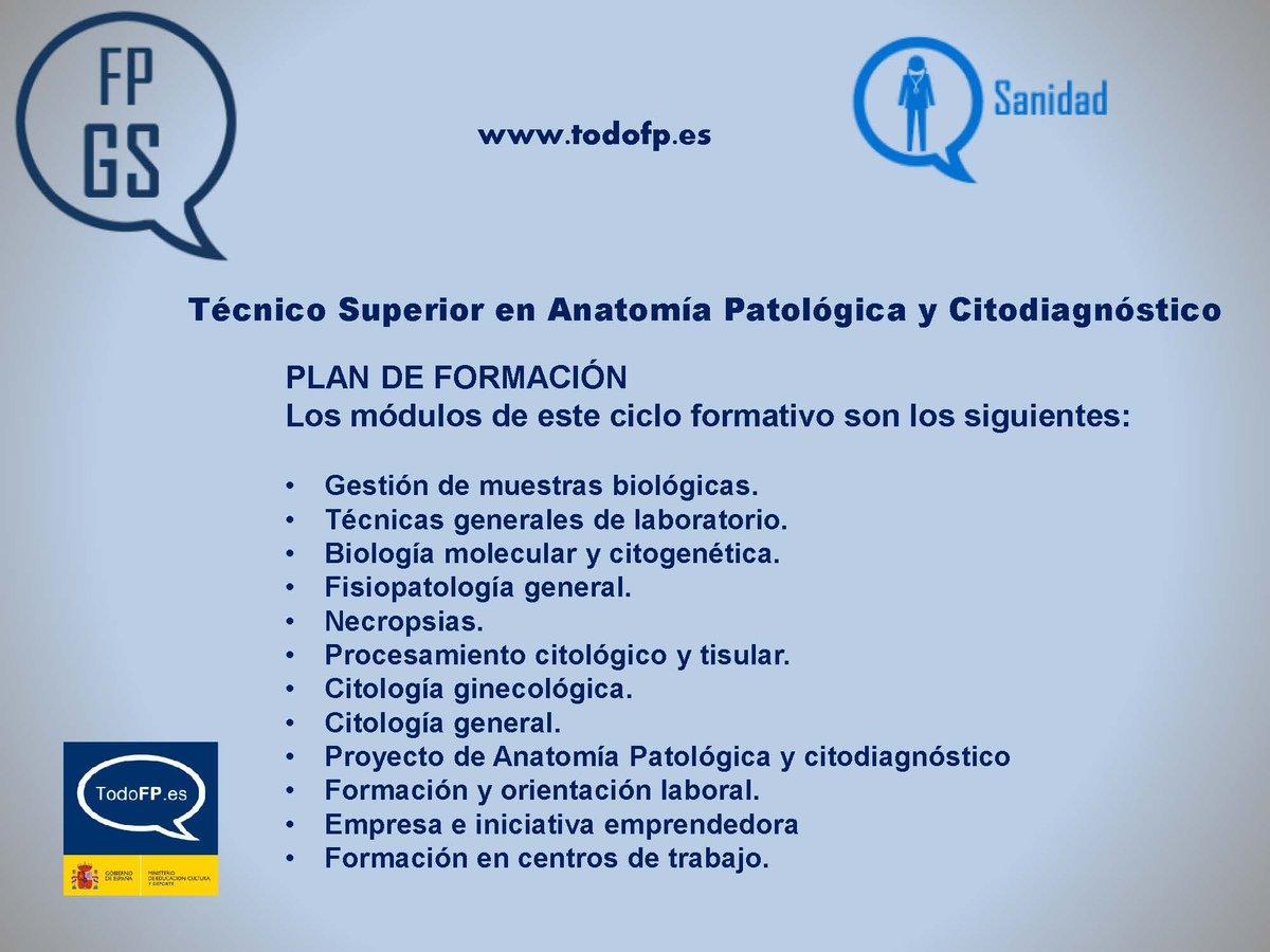 TodoFP on Twitter: \