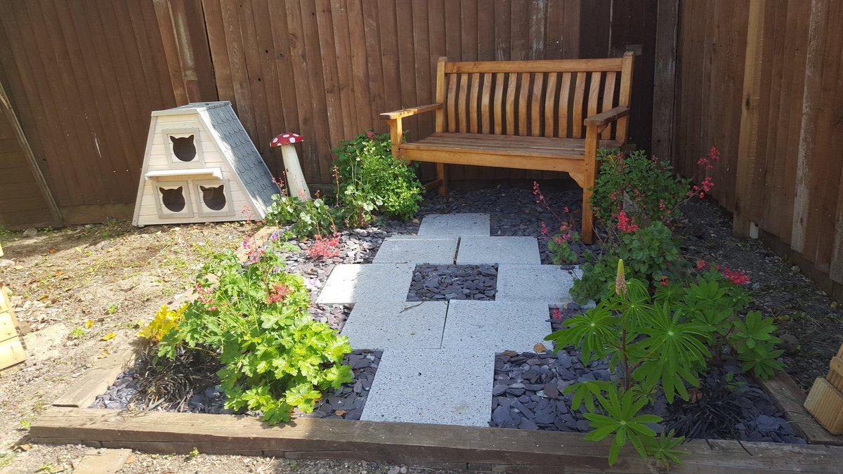 Awe Inspiring New Start Cat Rescue On Twitter Look At This Garden Inzonedesignstudio Interior Chair Design Inzonedesignstudiocom