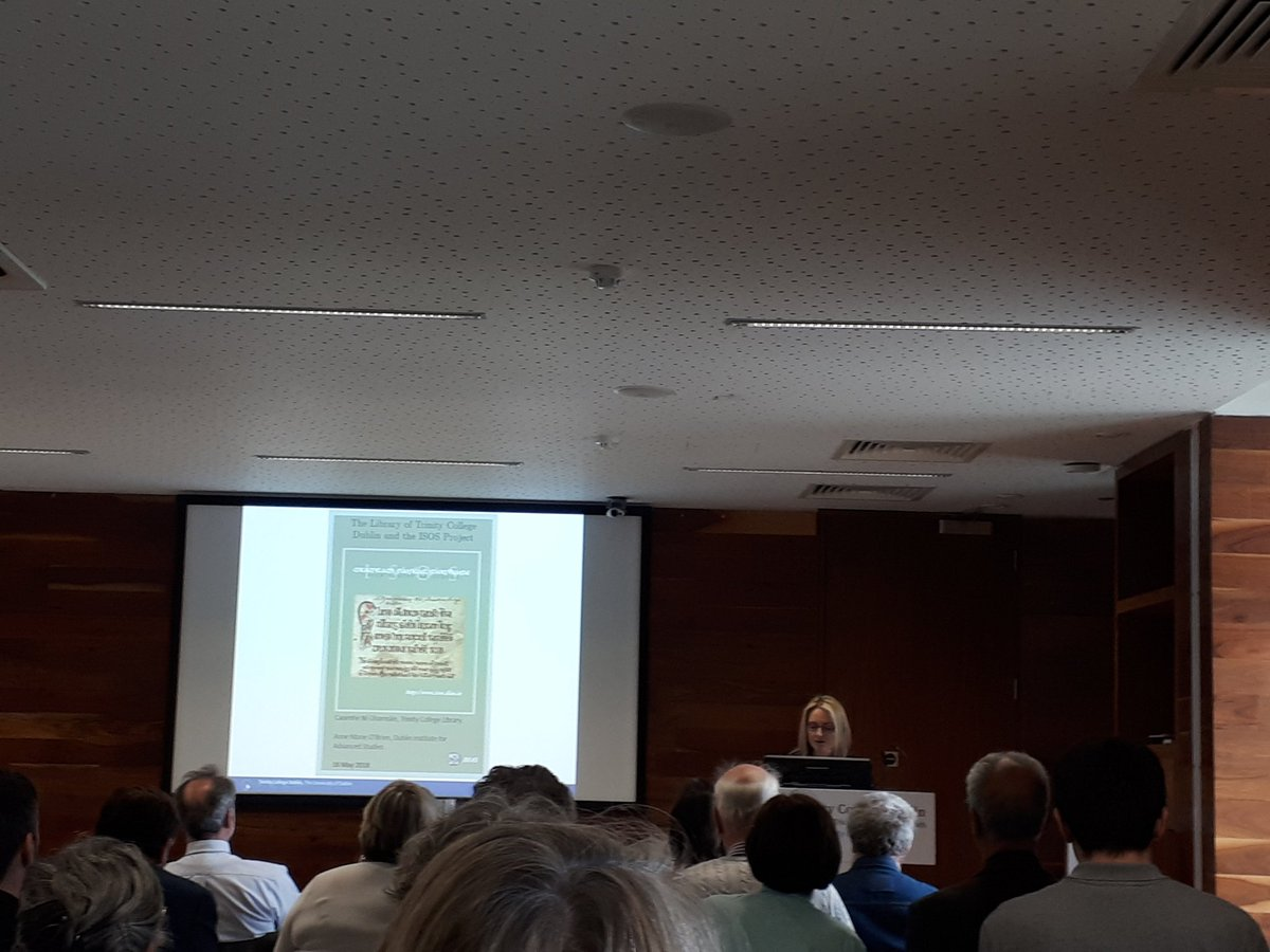 test Twitter Media - Annemarie O'Brien, Director of @DIAS_ISOS speaking now @IrishMSSofTCD #irishmssoftcd https://t.co/W07HK5J0AZ