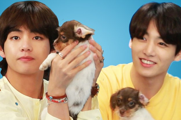 BTS Played With Puppies While Answering Fan Questions And Revealed Who's Going To Drop The Next Mixtape https://t.co/eQf9yJo9A2
