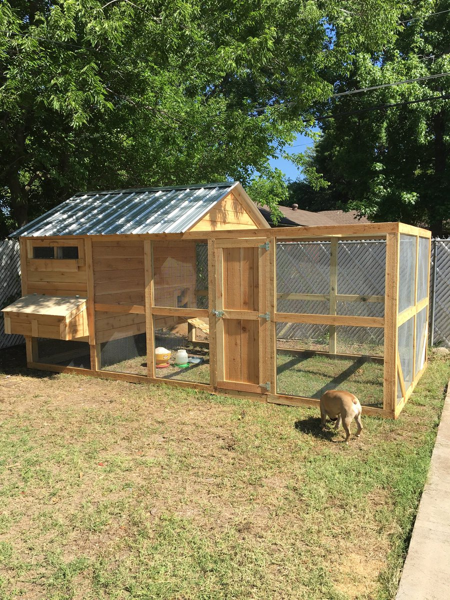 We got a new chicken coop for my wife's hens. It looks better than the house I grew up in.