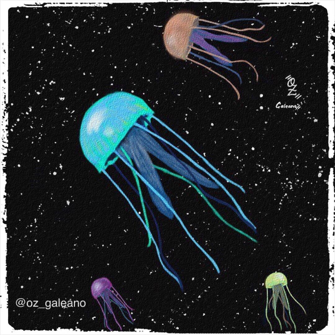 Jellyfish Illustration    http:// instagram.com/oz_galeano  &nbsp;    #ilustracion #art #illustration #dibujodigital #digitalart #arte #jellyfish #colors #blackbackground #dots  @dibujando @Ayuda_artista @ConoceArtistas @ApoyaAlArtista @TheArtistHelp @art_everywhere1 @TheArtBond @ApoyarArtistas<br>http://pic.twitter.com/6AziaGzTVW