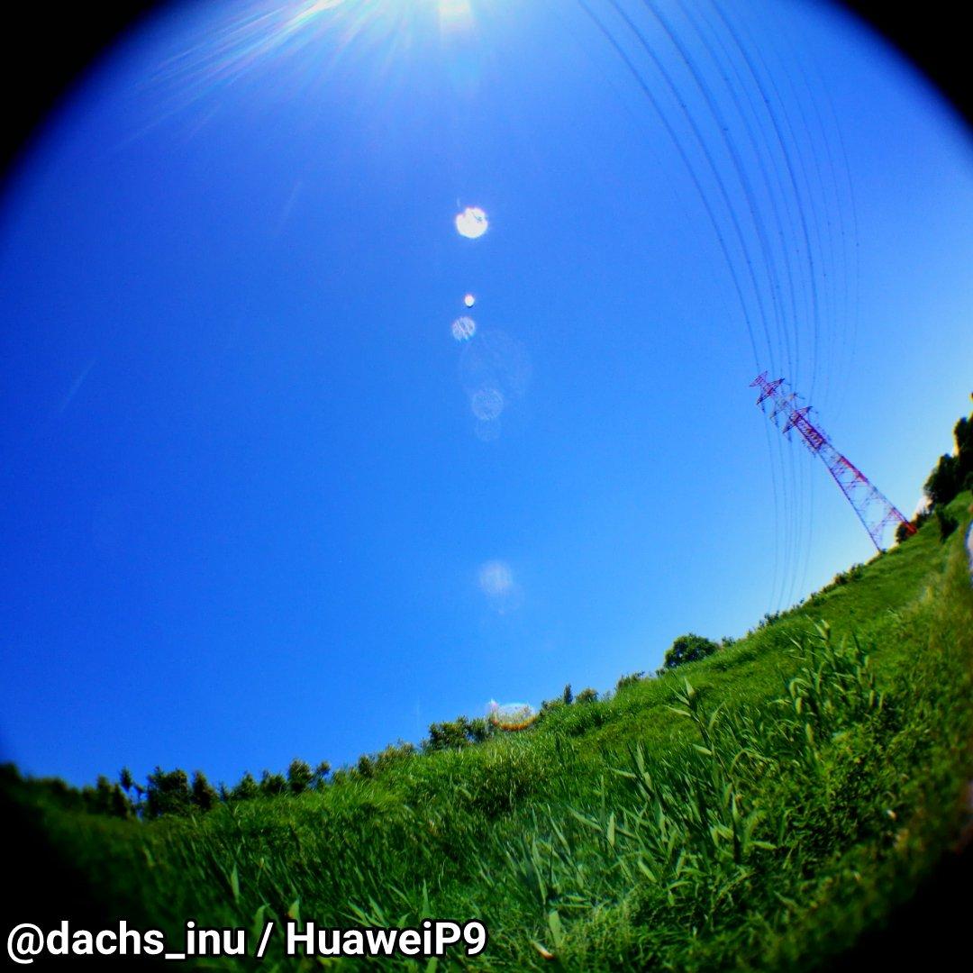 test ツイッターメディア - #キャンドゥ で買ってきた #魚眼レンズ を持って #お写ん歩 中。写り面白いですね??。ただピントが難しいなぁ、遠景でスマホ側を無限遠にしてもピントが合わず??。 今日は昨日とは打って変わって風が強く涼しい、というかポロシャツで出てきたら寒いくらい?? https://t.co/49mAyRtviA
