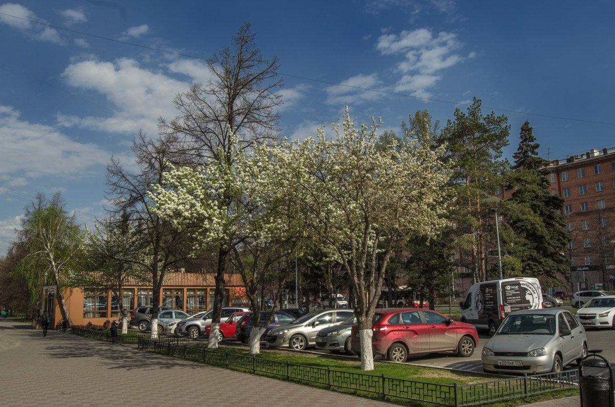 Картинки города челябинска весной, сделать