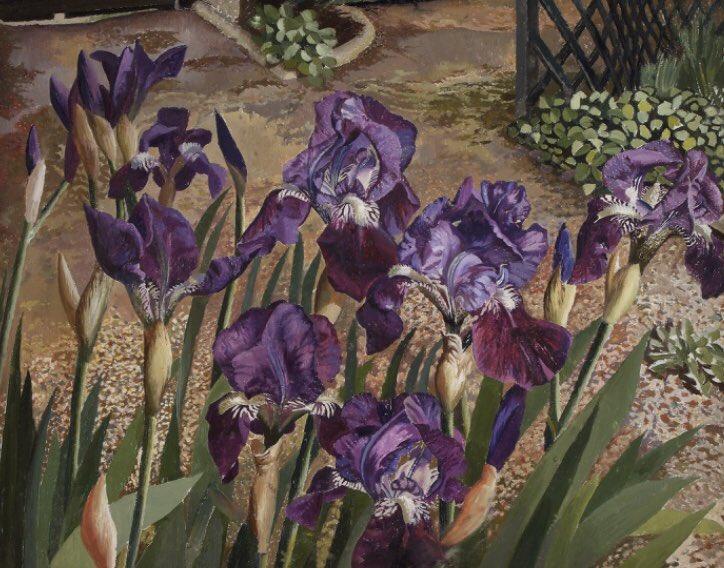 Blue Iris, by Stanley Spencer. Painted in #Cookham, #Berkshire, near the #artist's home, c.1938. #Artlovers #twitart #art #garden #arte. Held @carrick_hill, Australia<br>http://pic.twitter.com/M56SK1vZW4