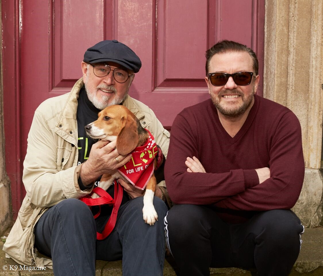 Please join the new campaign with rescued ex-laboratory dog @ScarlettBeagle, who is helping @rickygervais and @PeterEgan6 call for a rigorous public #science hearing, to stop now proven false science which maintains these atrocities:  http:// scarlettbeagle.org  &nbsp;   #Dogs #Cats #Animals<br>http://pic.twitter.com/Gx4Oi8VwyB