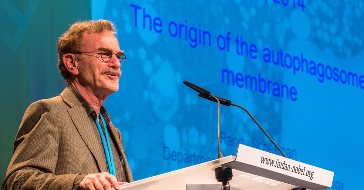 "test Twitter Media - ""Publish or Perish"": #NobelLaureate Randy Schekman will be part of our #LINO18 panel discussion on #science #publishing He earlier commented on the state of #sciencepublishing in our recent blog post by @Ulrike_Boehm https://t.co/AHYHJlXSTl #openaccess @eLife https://t.co/QYTDrBf6He"