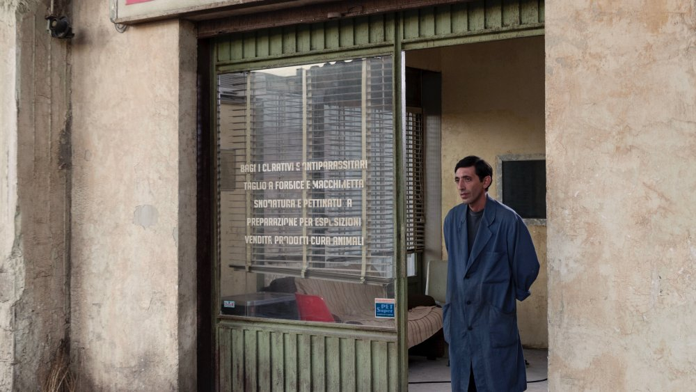 Read our #Cannes2018 review of  'Dogman,' which won best actor for Marcello Fonte: https://t.co/ctwNkeyir4 https://t.co/MwEOU6uceU