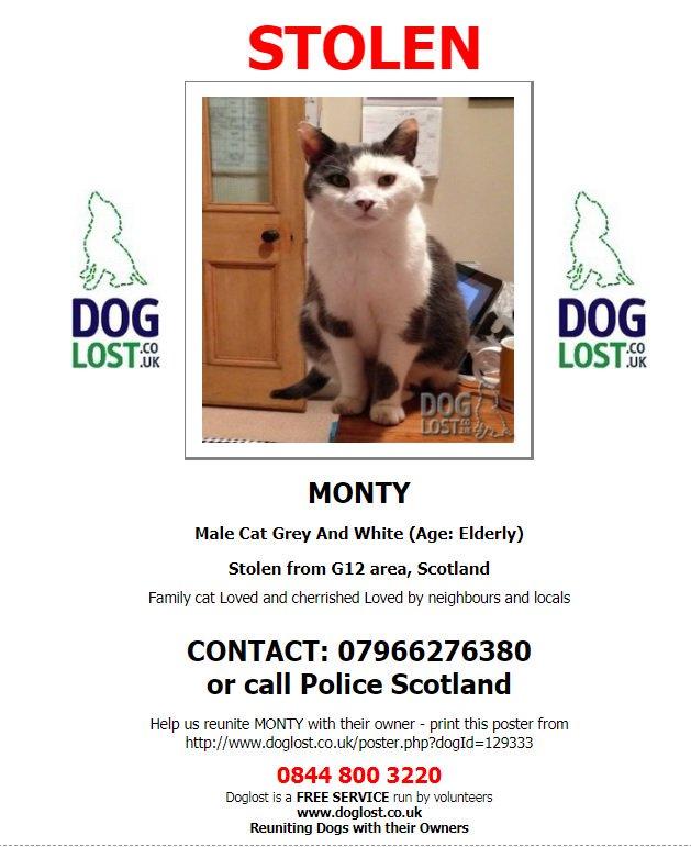 #STOLEN#HelpFindOurMonty Grey&amp;White ELDERLY #Cat WITNESSED BEING TAKEN BY FEMALE &amp; TAKEN AWAY IN CARRIER Saturday 19/5/18 10:30pm outside home Hyndland Rd #Glasgow #Scotland #G12 @policescotland investigating Neutered #ScanMe #MissingCatsUK @DoglostUK http://www. doglost.co.uk/dog-blog.php?d ogId=129333 &nbsp; … <br>http://pic.twitter.com/B3DkvPunor