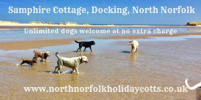 Dog & family friendly selfcatering holiday cottages in North Norfolk #holiday #dog #woof Book Now 🐾 bit.ly/2lUbzLA @dogfriendlyinfo @BookHolsDirect @DogsAdored @2posh2pitch @ministryofdog @foralldogkind #thepetbiz #dogbiz #woof #lovewestnorfolk