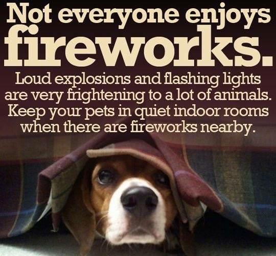 We love our pets! Let's keep them safe inside! #Fireworks #LongWeekend #Pets #NoFireworks #KeepPetsSafe #Inside #Dog #Cat #Safe #Scared #Scary #FlightRisk #Runner #Runners #RunAway #BeCareful #PetSafety #Secure #StayWithThem #Quiet #QuietArea #SafeArea #EdenGarden #Mississauga<br>http://pic.twitter.com/XULym9VA3C