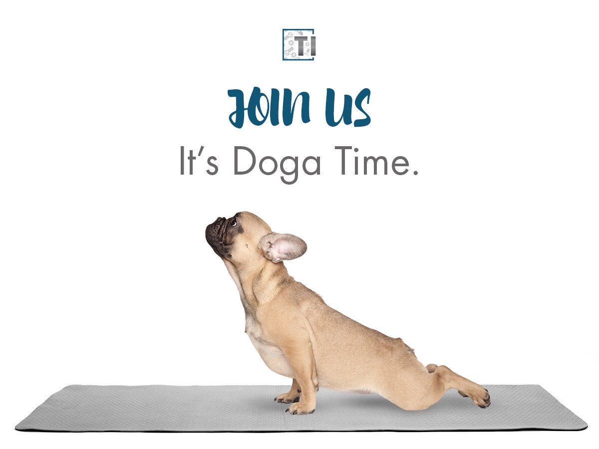 the dog class notes Dog training log sheets use with weeks 1-4 the love that dog training program wwwlovethatdogbookcom.