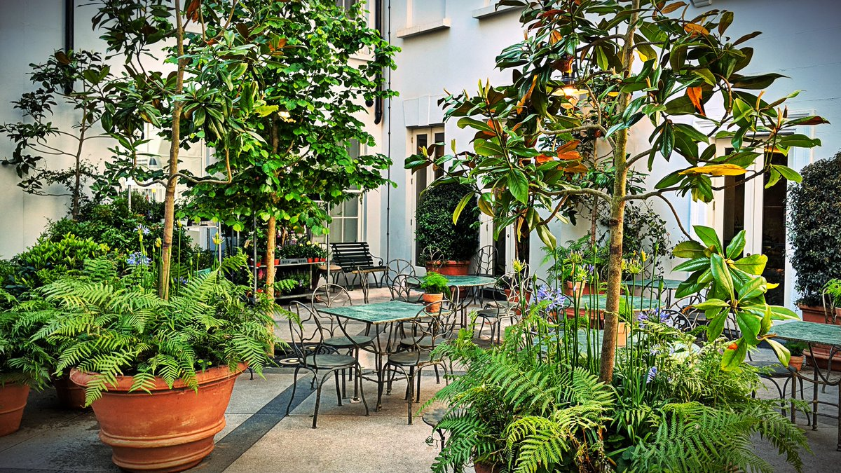 Mark King On Twitter The Courtyard Long Hidden Between King Street And Floral Street Recently Revived By Petersham Nurseries Is A Welcome Oasis Of Green In Covent Garden Exteriors Https T Co Pbgwypqz20