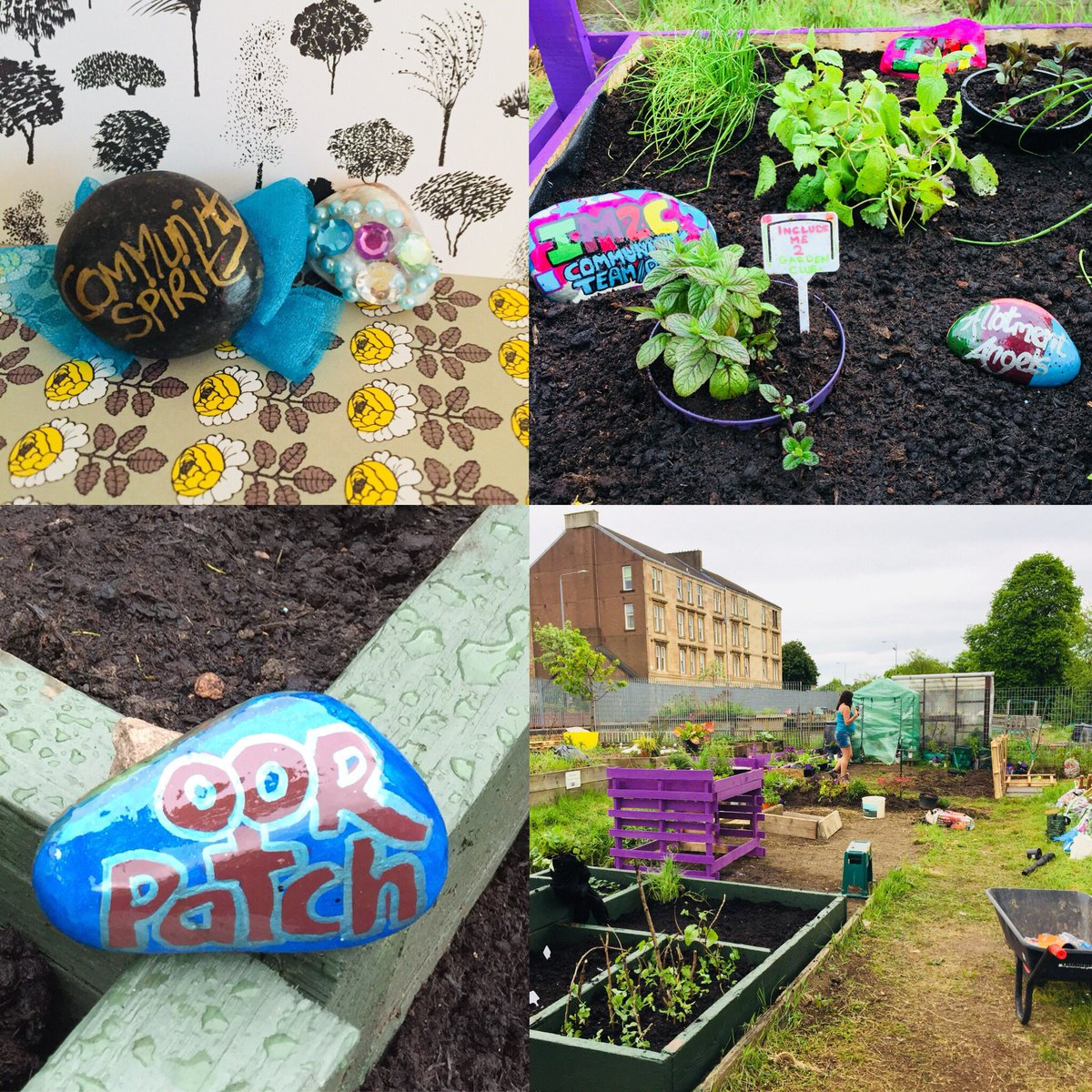 Another day at @includeme2club allotment: planting seeds, growing veggies, building community, and making friends. Thank you for the wonderful community spirit rock @lainymc2 and for the continued inspiring work you do @Suzieq1402 !#Glasgow  #GardenKaraoke<br>http://pic.twitter.com/rnsqK1Y27i