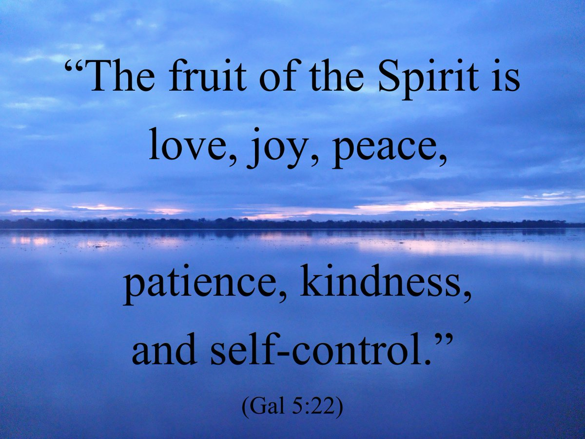 The fruit of the spirit is...  #IQRTG #quote #dailyquote <br>http://pic.twitter.com/HrIVXkPJCo