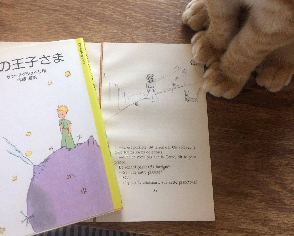 今回のカムバのテーマが「星の王子さま」じゃないかって見かけて本棚からひさしぶりに出してきた(°ω°)たしかに王子さまが地球に来て最初にヘビにした挨拶が「Good Evening」だし、大切なことを教えてくれるのはキツネだね