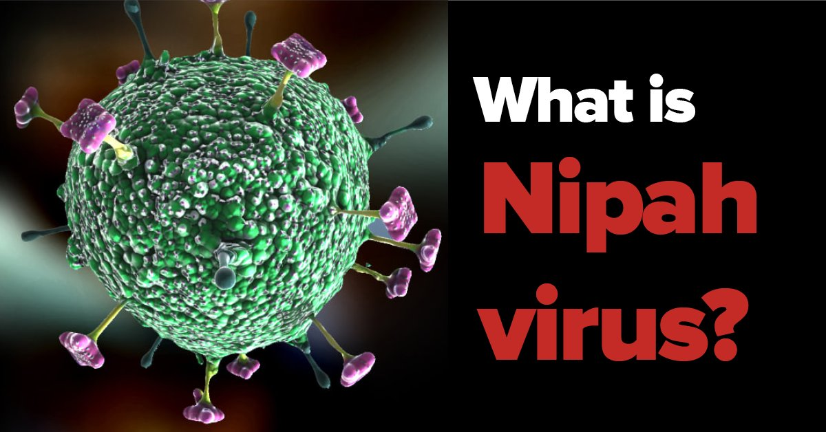 Nipah virus: All you need to know https://t.co/icNpkM4YZs https://t.co/GU9lZVE1K6