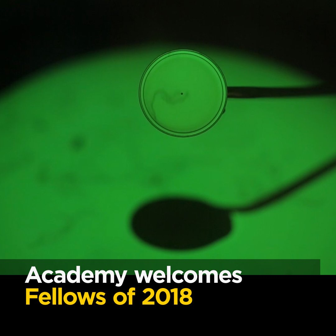 The Australian Academy of Science welcomes 21 new Fellows today. Find out more: https://t.co/5J7rvWtKyd #ShineDome18 Here they are: