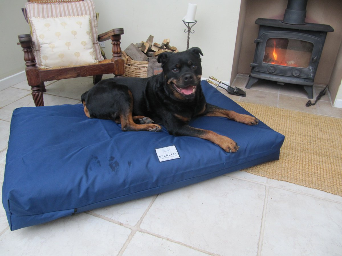 Orthopedic Dog Bed With Pocket Springs Provides Perfect Comfort And Support For Large Dogs Https Bit Ly 2hrfvu1 Pic Twitter Com Ih6jmlixzh