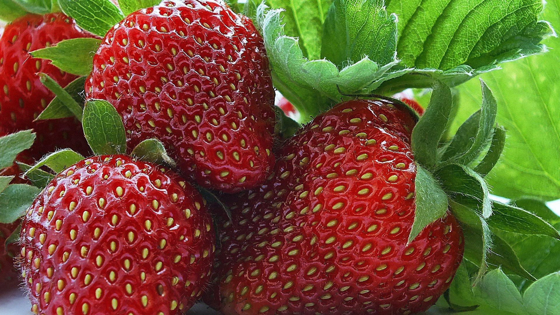 Картинки на рабочий стол лето фрукты на весь экран