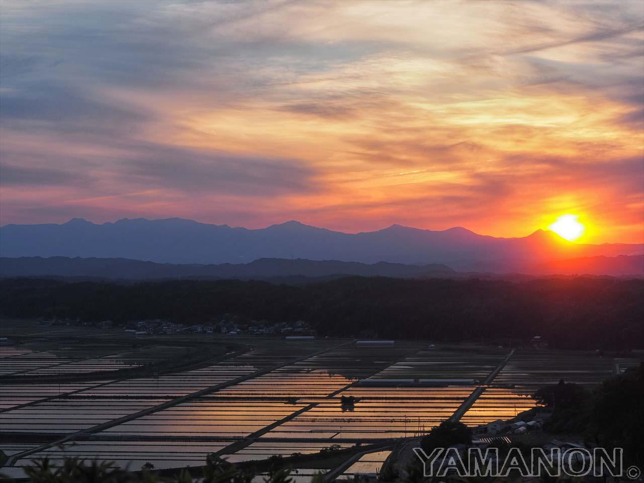 水田の夕日。