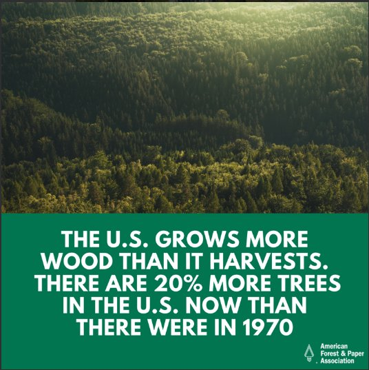 Did you miss #LoveATreeDay? Don&#39;t worry! We can celebrate the value of trees every day :) @ForestandPaper<br>http://pic.twitter.com/YK8m95swqG
