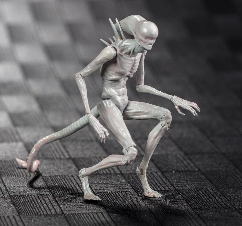 Alien Covenant 1/18 Scale Neomorph Figure Order Deadline: July 20 2018 On Sale: Nov 2018 <br>http://pic.twitter.com/SUe4UvqvLE