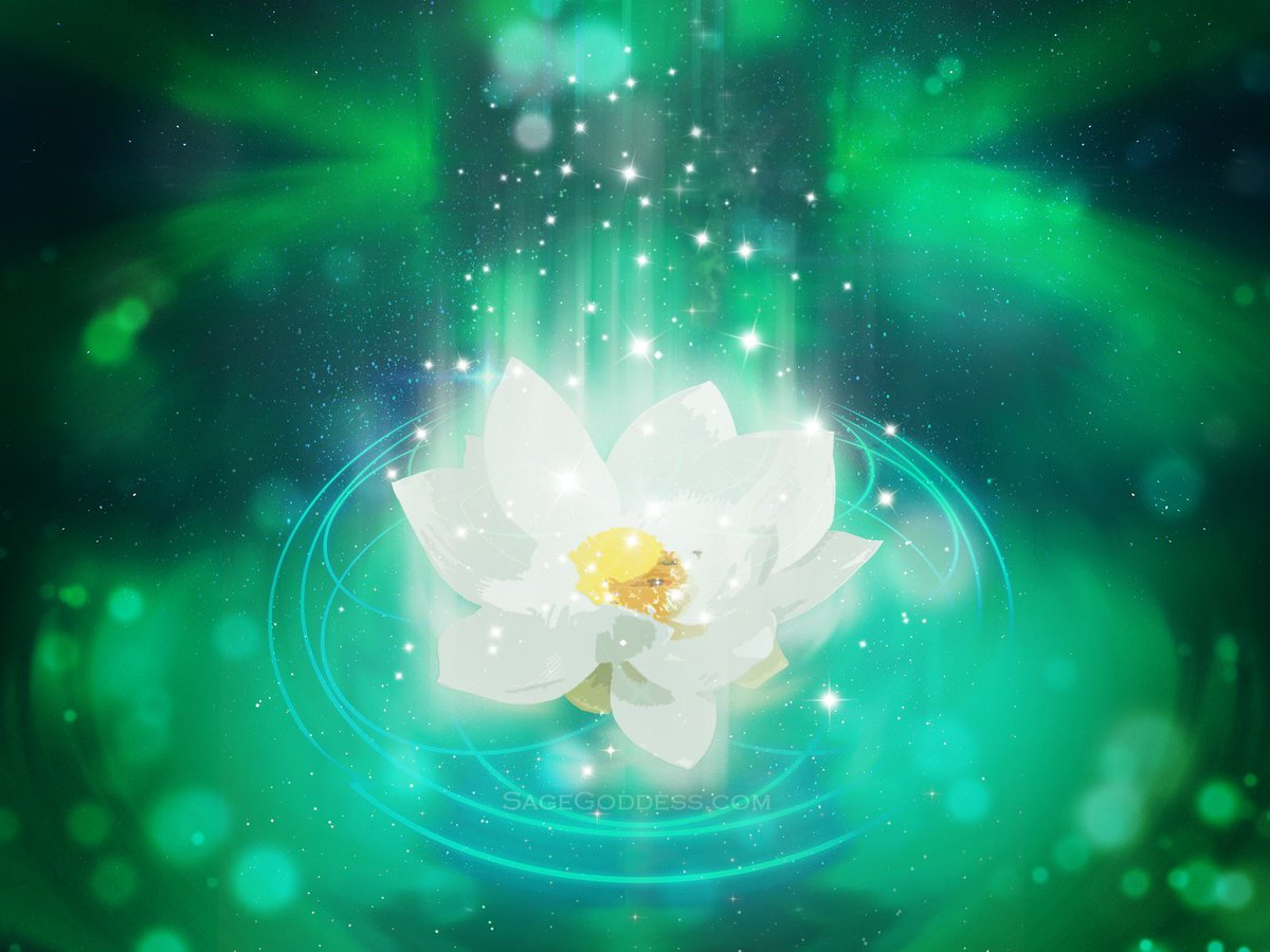 Sage Goddess On Twitter The Beautiful Lotus Flower Has Many