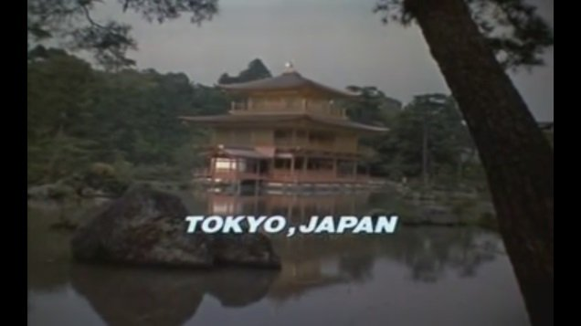 ショー・コスギの「リベンジ・オブ・ザ・ニンジャ」は本当みんなに見てほしい。映画開始0秒で「ドォォン」という効果音と共に「TOKYO,JAPAN」と紹介される金閣寺の姿にもう我々の目は釘付けである