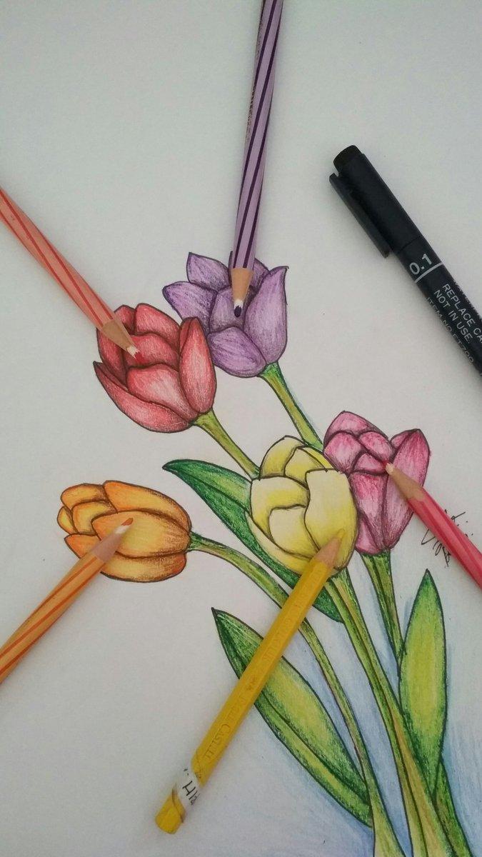 Warna Lukisan Bunga Tulip Kata Kata
