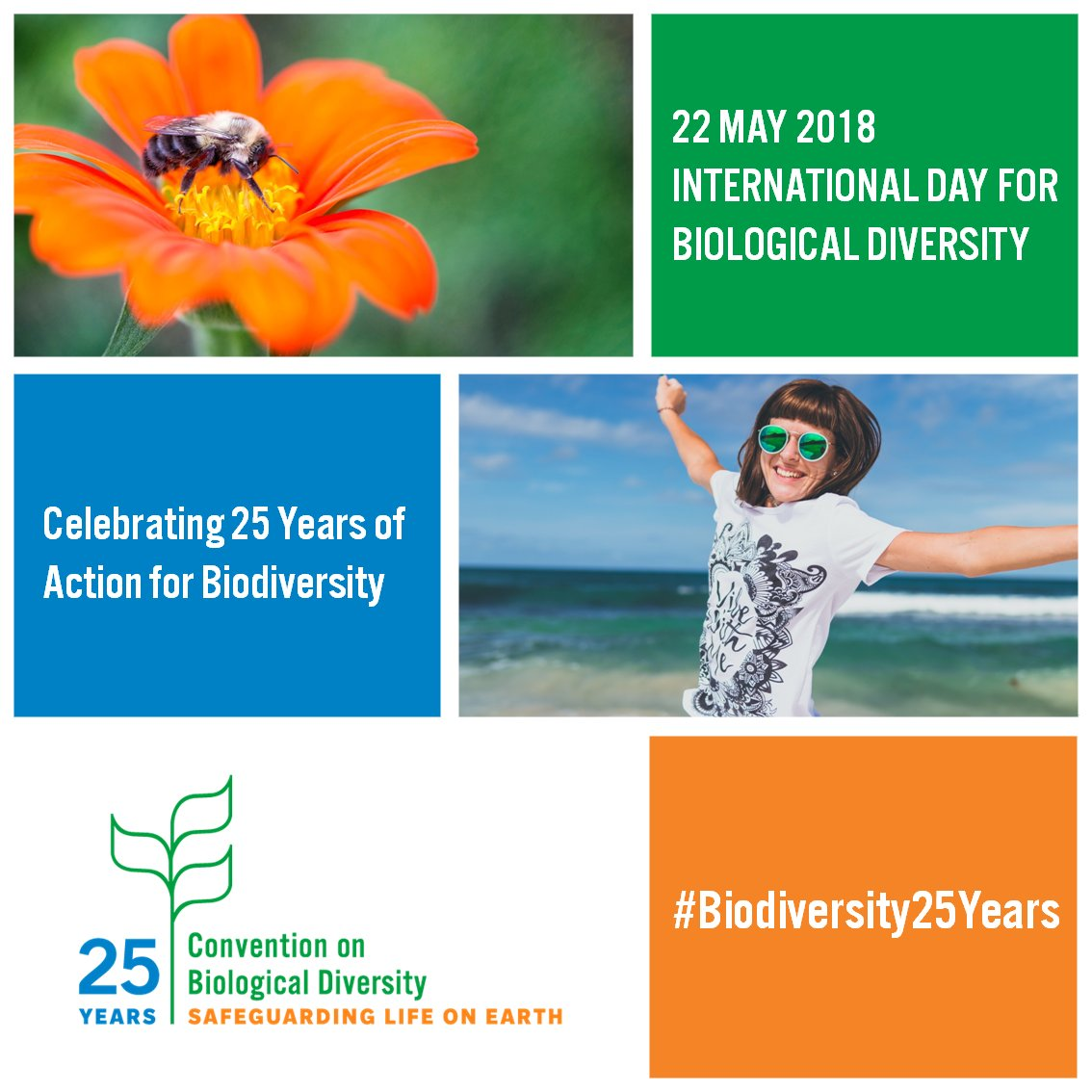Happy #IntlBiodiversityDay! Today we celebrate nature's beauty & wonder, and all the people working hard to safeguard it. Much progress has been made, but there's still much to do. Let's redouble efforts to preserve Earth, our only home  #Biodiversity25Years@CBDNews