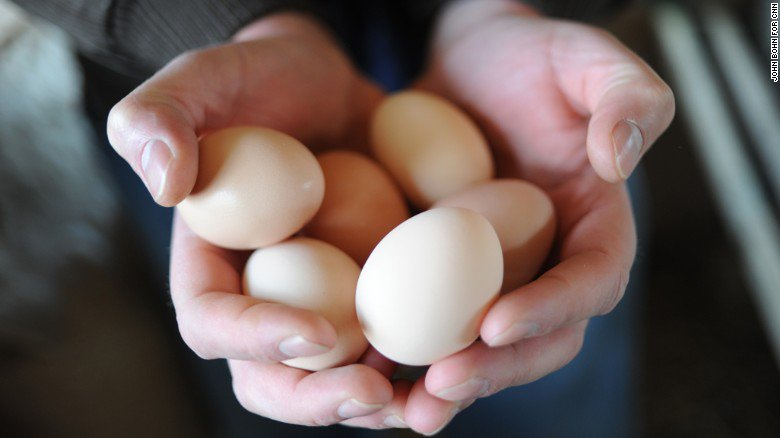 An egg a day might reduce your risk of heart disease (edition.cnn.com)