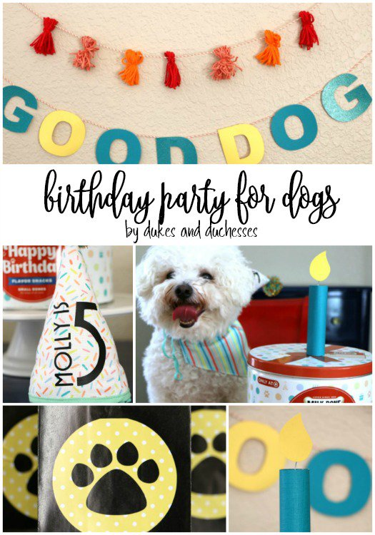 Melanie Kampman On Twitter Celebrate Your Pups Birthday Or Gotcha Day With These Simple Party Ideas And MilkBone Treats From Target