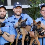 Image for the Tweet beginning: Meet WA police's newest recruits: