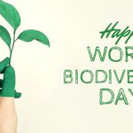 Happy #WorldBiodiversityDay! 🌱🐸 @InterregFWVL has this amazing project, #TEC!, whose goal is to preserve #cross-border 🇫🇷🇧🇪 biodiversity w/ the help of the local population! 👩🌾👨🏭 Check it out there 👉 https://t.co/ocD9tQOT7o