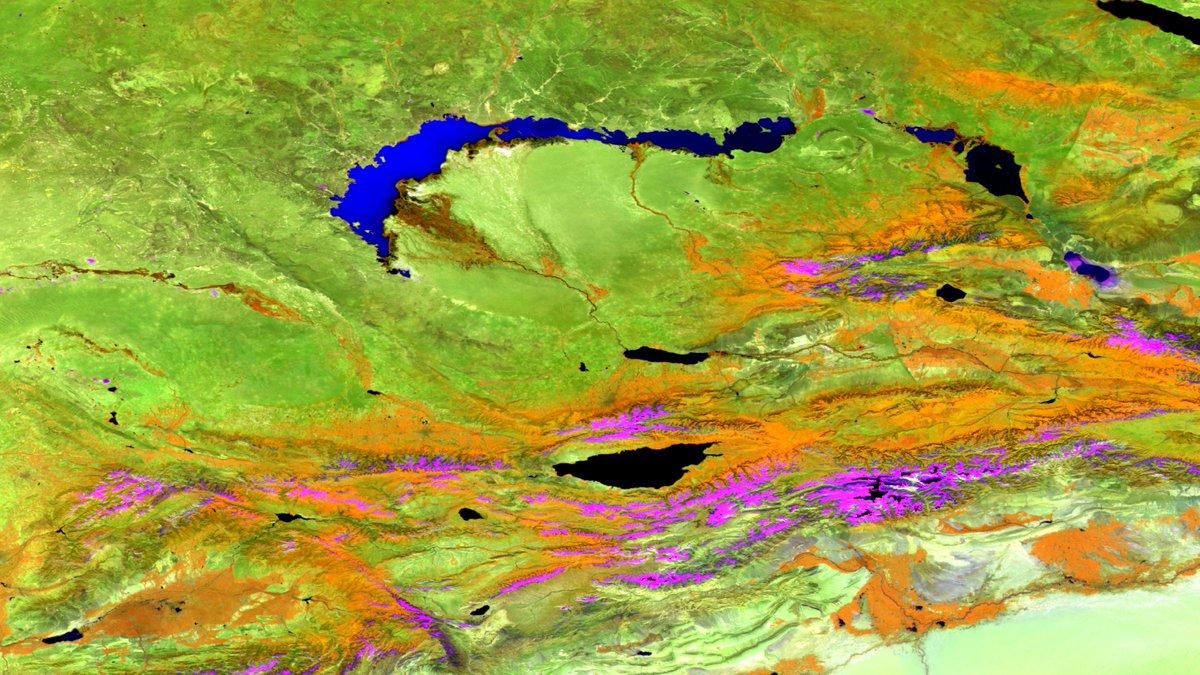 #MODIS (2016 composite), NIR-SWIR1-Blue, 1670 km wide. #Bare #Land in #ИлийскийРайон, #AlmatyRegion, #Kazakhstan.  #earthengine @NASAEarthpic.twitter.com/EiBfLK4qwW