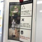 笑えるw九州工業大学の研究室の「エンジニアに話しかけていいタイミング」の貼り紙