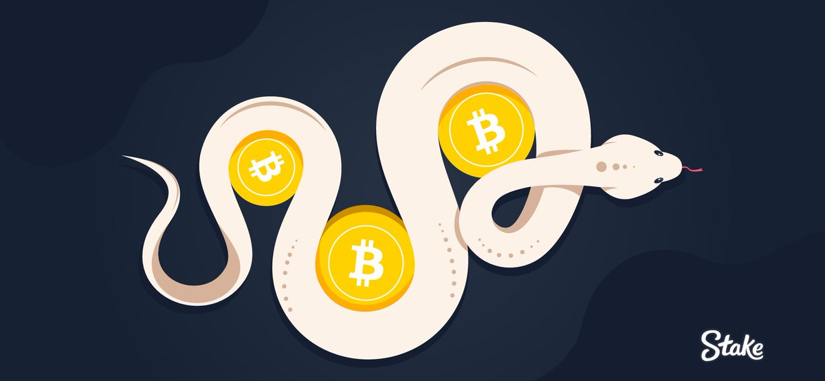 snake eyes cryptocurrency