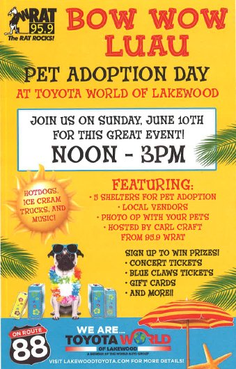 We Will Have 5 Rescues With Dogs Available For Adoption As Well As Multiple  Pet Vendors. The Event Is Dog Friendly So Bring The Whole Family!