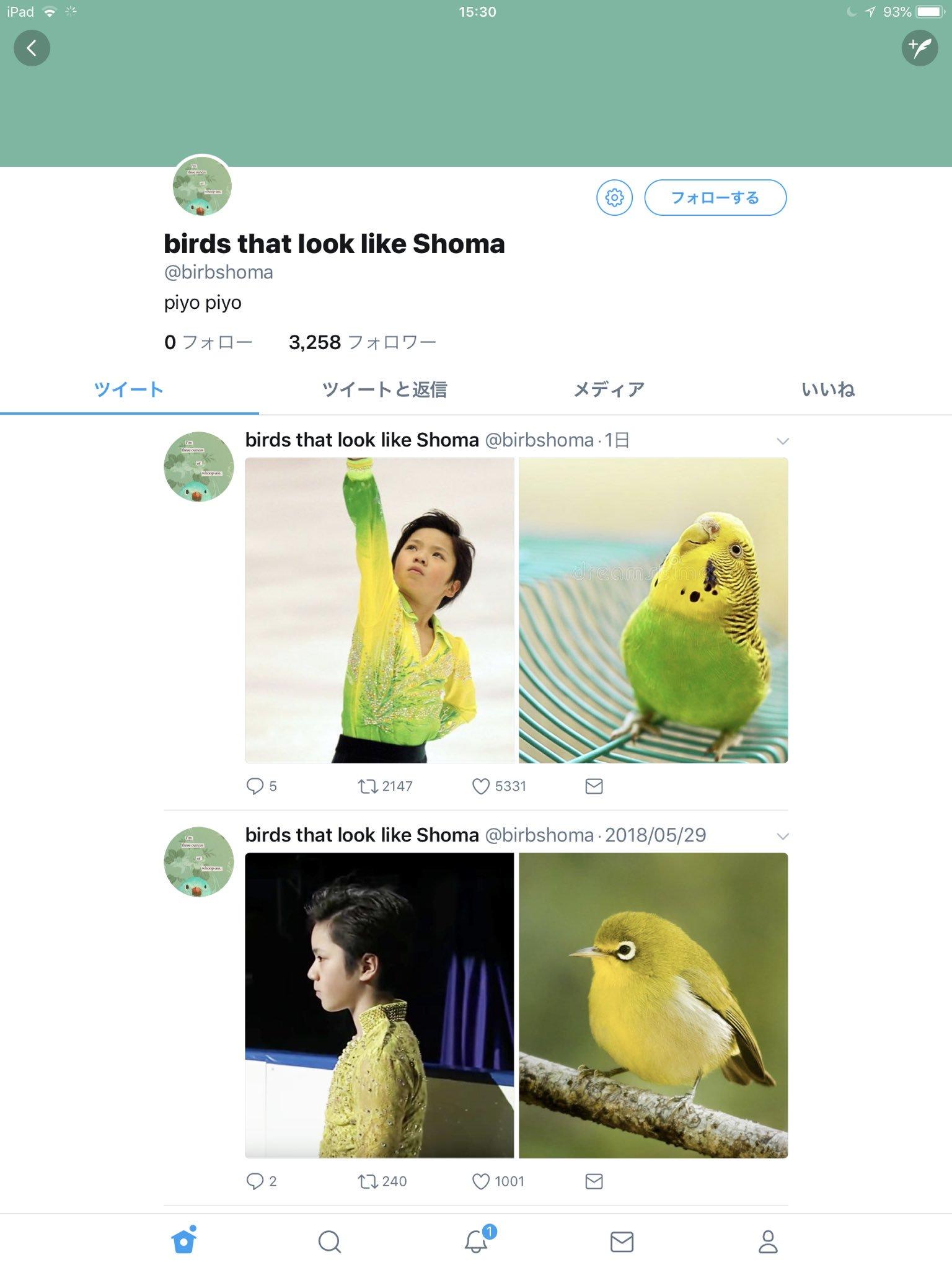 このアカウント、類似画像の精度が高すぎて笑う。