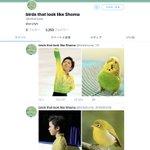 シンクロ率が半端ねぇ! スケート宇野昌磨選手とある動物の類似画像集が面白すぎる!